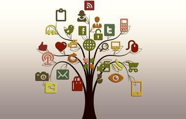 Kurs: Schnell und leicht zur eigenen Website/ Blog