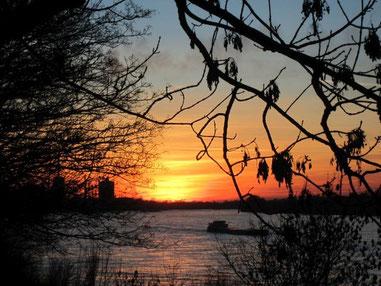 Sonnenuntergang in Wanheim an der Rheinpromenade