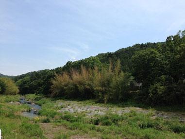 埼玉の山奥