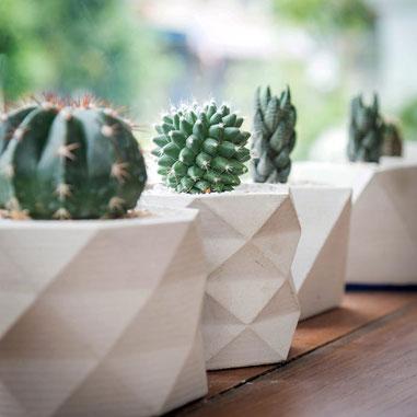 Vase Facette; Pointe de Diamant; Pot de Fleur Béton; Décoration Cactus