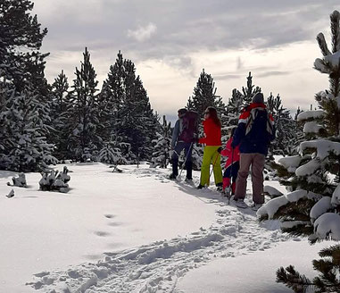 balade-raquettes-ariege-pyrenees-mini-journée