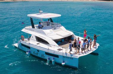 Sorties d'observation des baleines sous l'eau avec catamaran à moteur de luxe, puissant-Duocean