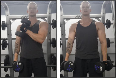 Bicep biceps workout exercise bicep curl hammer curl