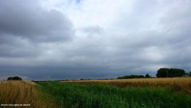 1ère approche, Baie de Somme, Picardie