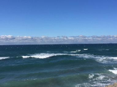 沖に白波がポツポツと出てきましたが・・・ 潮も合わず。