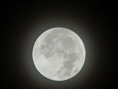 17日の夜中のお月さま 大会に行く前にパチリ