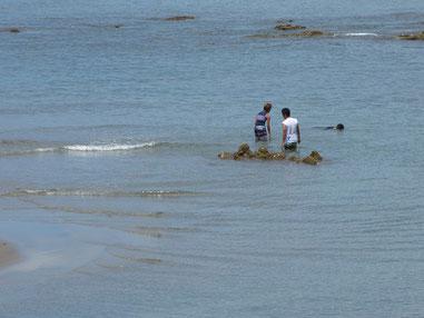 しかーーし、そんなのお構いなしに海で遊んでいましたよ(笑)