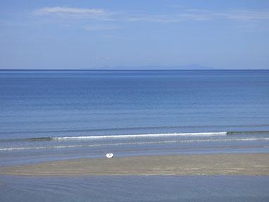 海がとても澄んでいました~  が、クラゲちゃんちらほら(ーー;)