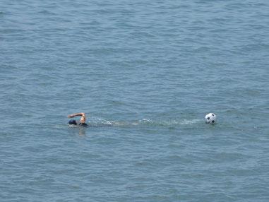 正解は浮きでした~ 今日もがっつり遠泳&パド練オツカレサマでした。