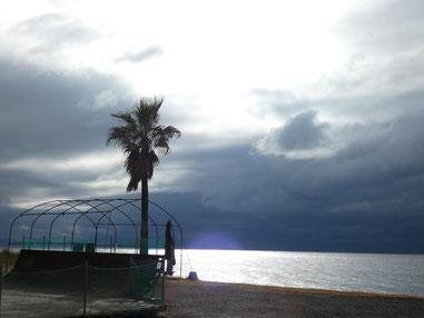 どんよりと黒い雲に包まれ夕方は雨でした。