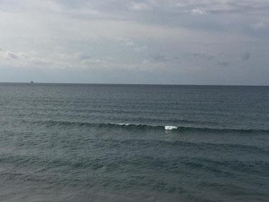 明日からまたグッと冷えて波も上がってくる予想ですね。