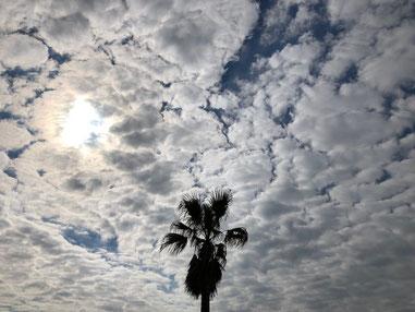 雲多めな一日でした。
