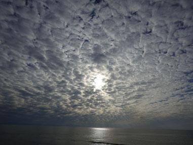 今日はうろこ雲~~