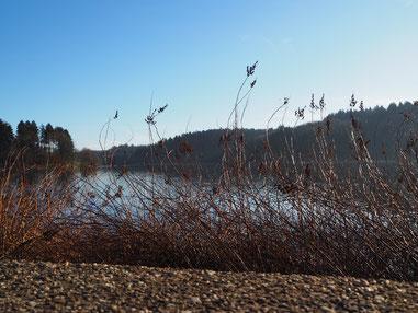 Herbst am See - achtsames Lauschen