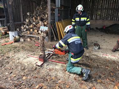 Kettensägenausbildung in Pichl 30.10.2018