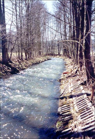 begradigt, Ufer auf weiten Stecken mit Betonplatten und Erlen fixiert, zu schmaler Gewässerrandstreifen