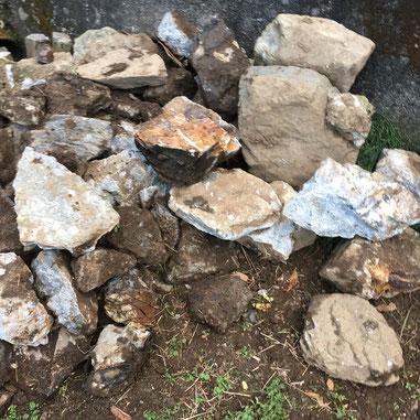 取り出した石の一部 2020.11.23撮影