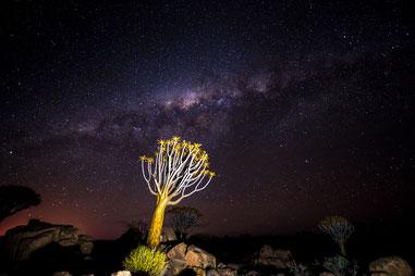 Die Milchstrasse über dem Köcherbaumwald in Keetmanshoop (Namibia) © 2016 belimago Stephan Stamm