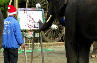 トナカイの絵を描く結希。