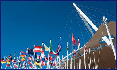 comprar-banderas-institucionales-banderas del mundo-paises-ciudades-don-bandera