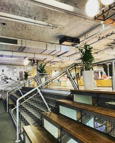 location et entretien de plantes pour vos bureaux à Paris