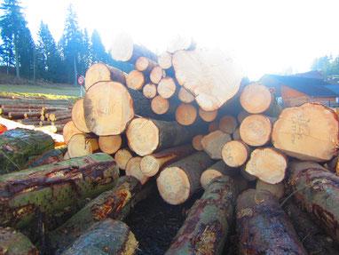 Holzstoß am Ladeplatz