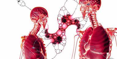 Zellen, Wunden, Wundbeschreibung