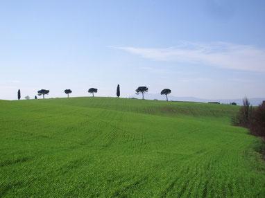 grünes Chianatal