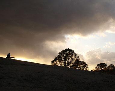 飛行場が見える丘(武蔵野の森公園)