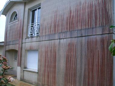 traitement antimousse facade