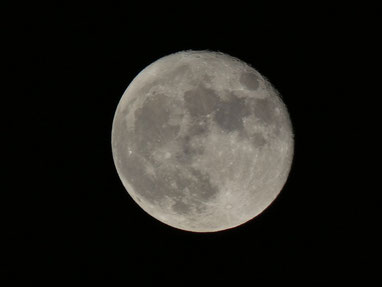 昨夜の中秋の名月!