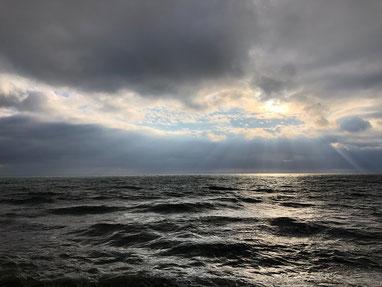 途中から西北西の風で波もお昼よりはアップしてましたが潮多し(>_<)