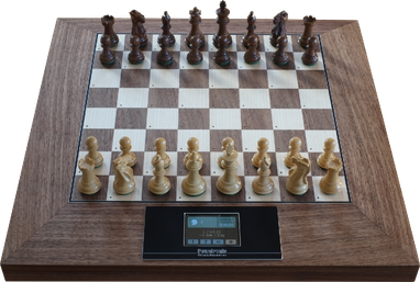 a.) Model Grandmaster  incl. 34 premium chessmen in a sturdy box,  Euro AC-adaptor, cable for powerbank, documentation EN, 2 year guarantee, CHF 1580.-- (excl. shipping costs)
