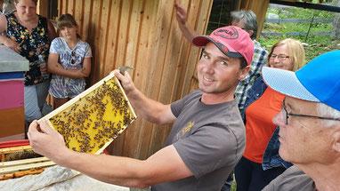 Der Gastgeber Striedinger Kurt beim Einsatz bei seinen Bienen