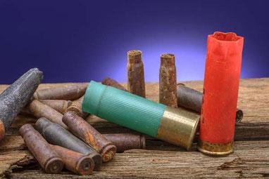 Munition für die Gänsejagd