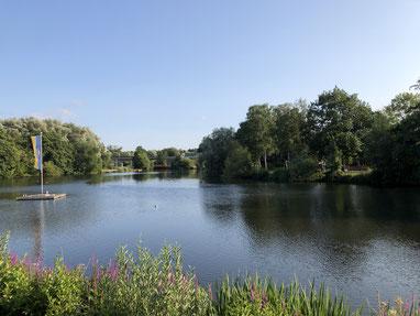 Informelle Jugendtreffpunkte sind entlang der Este  zu finden, etwa am Mühlenteich oder bei den Brücken der Spange - Foto: SJR