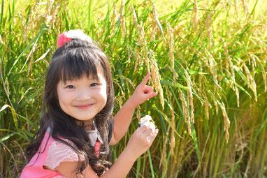 水稲と子どものイメージ(写真)