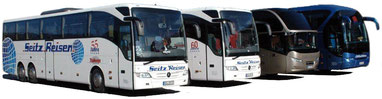 Vier unserer Busse