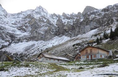 Alp im Winterkleid