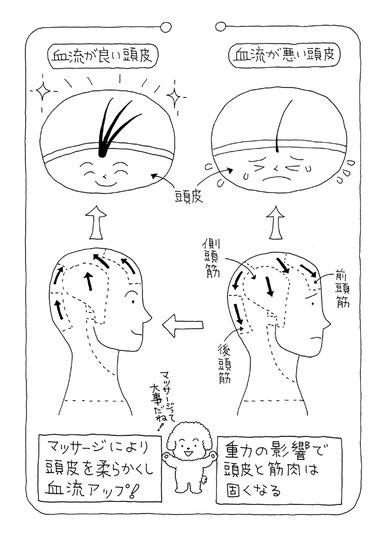 頭の筋肉が重力に耐えられなくなった時のイラスト