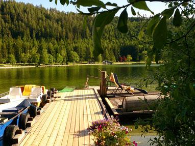 eigener Steg zum See mit Blick in die Steiermark :-)