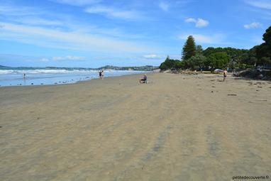 - Plage d'Owera - Nouvelle-Zélande -