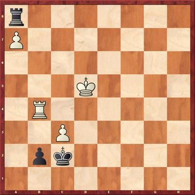 Gottas - Vishani,F: Hier folgte sehr unterhaltsam 58. ... Kxc3! 59.Tb7 Kc2?? 60.Kc6?? (Tc2+! hält Remis!) Txa7 61.Txa7 b1=D nebst Remisschluss ;-)