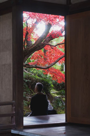 京都栄摂院の紅葉