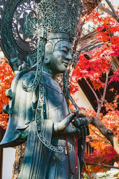 妙心寺 観音様と紅葉