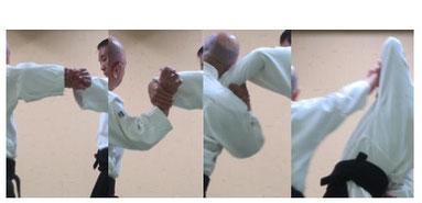 画像:片手取りに外巡り外転換、肘を落として母指先を天に向け、同時に母指球を受けの尺側手首に着けて陰の陽で掌を開き、受けの手首を下から側頸にて掬い取り、母指球を突き出す陽の魂氣から示指球を突き出して四教。竹・梅・松の剣の合わせと言える。