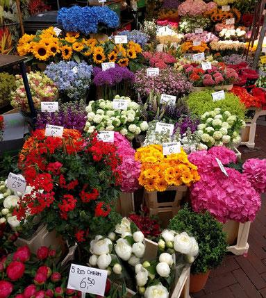 Ein Blick in den Bloemenmarkt in Amsterdam.