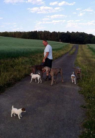 Unser letzter Spaziergang mit allen zusammen!