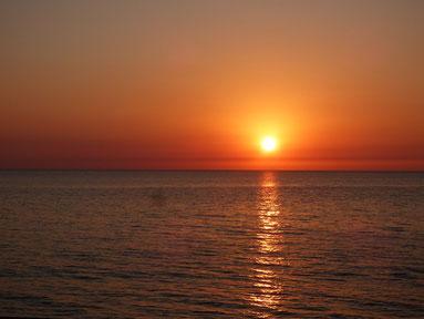 海面にくっつく瞬間は電話がかかってきて写せず・・