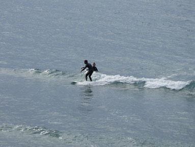 昨日に引き続き小波でも入水の 長崎からSBRさん また来てくださいね~